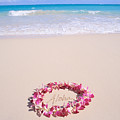 Aloha by Mary Van de Ven - Printscapes