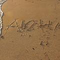 Aloha by Pamela Walton