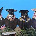 Aloha Teacup Chihuahuas by Aleta Parks