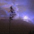 Alone In The Blue Fog by Terri Thompson
