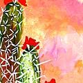 Alone In The Desert by Maureen Janssens