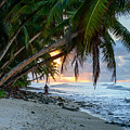 Alone On The Beach 2 by Michael Scott