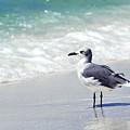 Alone On The Beach by Thomas R Fletcher