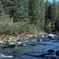 Along Deer Creek by Richard Verkuyl