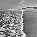 Along The Beach Bw by Bill Wakeley