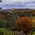 Along The Blue Ridge Parkway by Allen Nice-Webb
