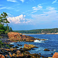 Along The Coast In Acadia National Park by Carolyn Derstine