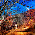Along The Country Lane by Debra and Dave Vanderlaan