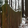 Along The Fence by Erica Degni
