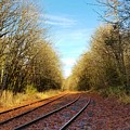 Along The Old Railroad  by Jane Powell