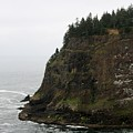 Along The Oregon Coast - 6 by Christy Pooschke