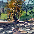 Along The Russian River by Donald Maier