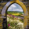 Along The Shannon Estuary by James Truett