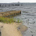 Along The Shore Of Biloxi Bay by Cora Wandel