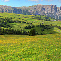 Alpe Di Siusi - Dolomiti by Joana Kruse