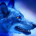 Alpha Wolf by Mal Bray