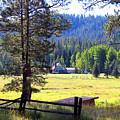 Alpine Arizona by Kume Bryant
