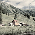 Alpine Farm by Peter v Quenter
