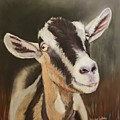 Alpine Goat by Janae Lehto