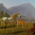 Alpine Landscape by Johan Jakob