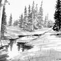 Alpine Meadow by Gary Strahan