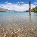 Alpine Scenery From Dart River Bed In Kinloch, New Zealand by Daniela Constantinescu
