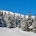 Alpine Winter by Rick  Monyahan
