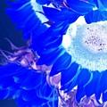 Alternate Reality Sunflower by Mesa Teresita