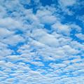 Alto-cumulus by Greg Vaughn - Printscapes