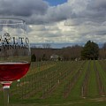 Alto Vineyards by Ty Shults