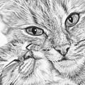 Always Together by Frances Vincent