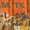 Am Tk by Karol Livote
