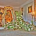 Amaryllis Exhibition In Beloeil Castle, Belgium by Sinisa CIGLENECKI