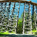 Amazing Kinsol Wooden Trestle Panorama View, Vancouver Island, Bc, Canada. by Andrew Kim