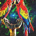 Amazon Parrotts by Don Barrett