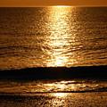 Amber Waves by Amanda Vouglas