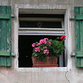Amberg Window by Karen Granado