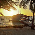 Ambergris Cayr Sunrise Palm Trees San Pedro Belize by Toby McGuire