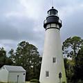 Amelia Island Lighthouse  by D Hackett