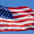 America by Betsy Knapp