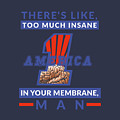 America First - Insane In Your Membrane by Frank Hoven