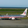 American Airlines 737-800 by Darrell MacIver