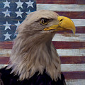 American Bald Eagle And American Flag by Garry Gay