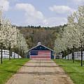 American Barn by Tom Heeter