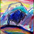 American Buffalo Sunset by M C Sturman