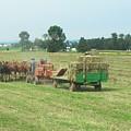 American Farming by Eddie Armstrong