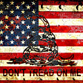 American Flag And Viper On Rusted Metal Door - Don't Tread On Me by M L C