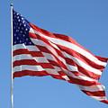 American Flag by Carol Groenen