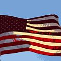 American Flag by David Lee Thompson
