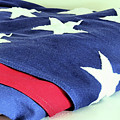 American Flag by Janice Drew